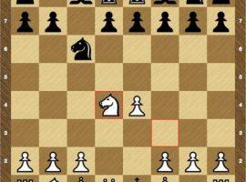 Шахматы играть черными с компьютером