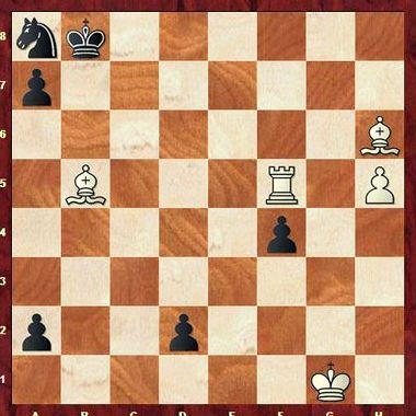 Шахматы этюды и задачи играть бесплатно