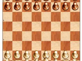 Играть в шахматы бесплатно и без регистрации