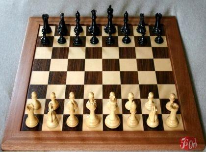 Как научиться играть в шахматы шахматы устанавливают порядок