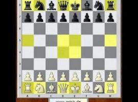 Шахматы начинающим играть бесплатно