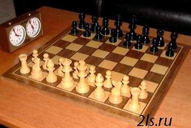 Шахматы онлайн с компьютером рыбка