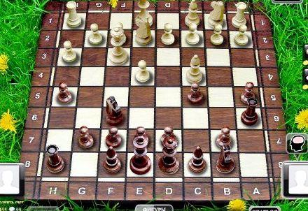 Шахматы онлайн с живыми игроками со всего игру на компьютер                                                                                                                                          Скачать