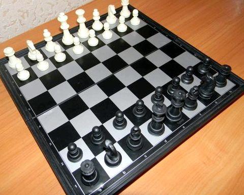 Шахматы правила игры для новичков пешка достигла