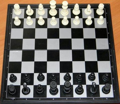 Учится играть в шахматы онлайн Но все начинается